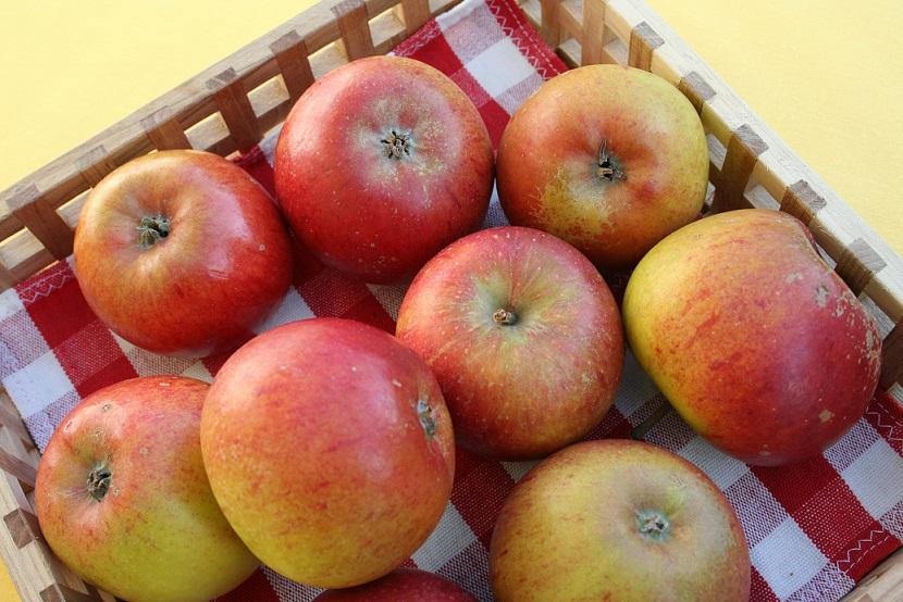 kivik æbler
